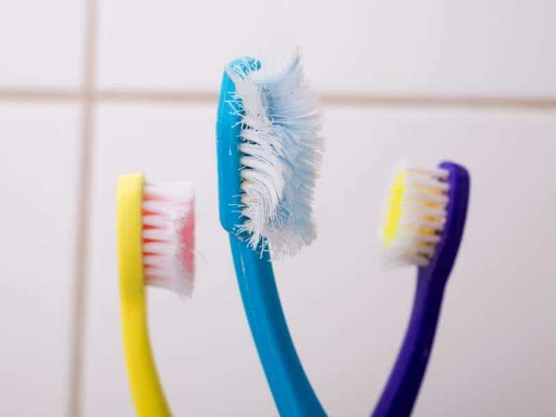 Three old and frayed toothbrushes
